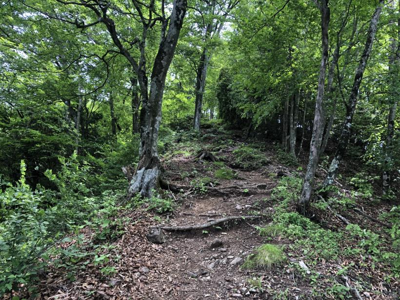 武甲山187