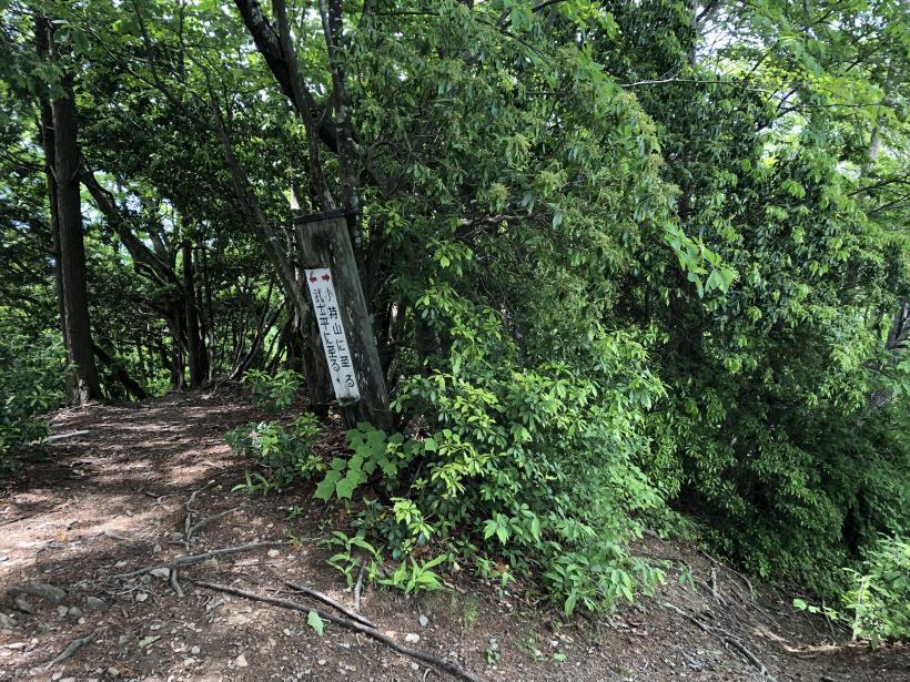 武甲山191
