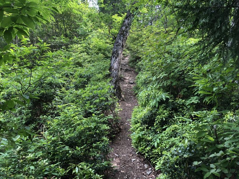 武甲山193