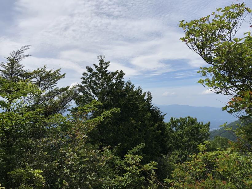 武甲山199