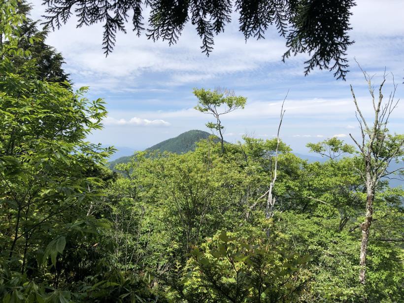 武甲山209