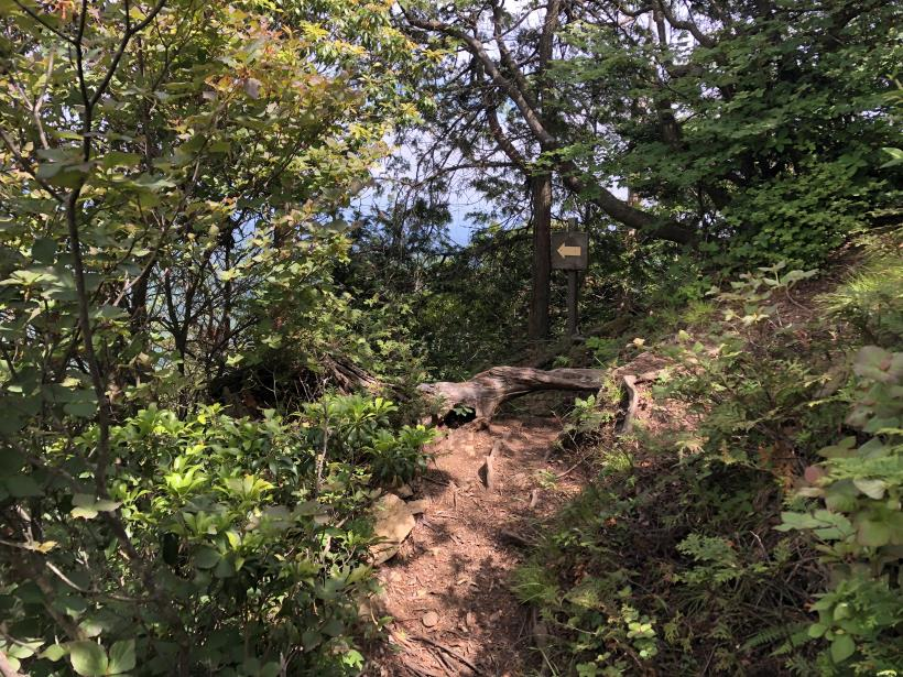 武甲山216