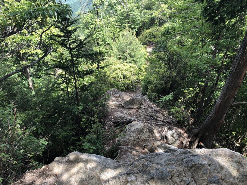 武甲山224