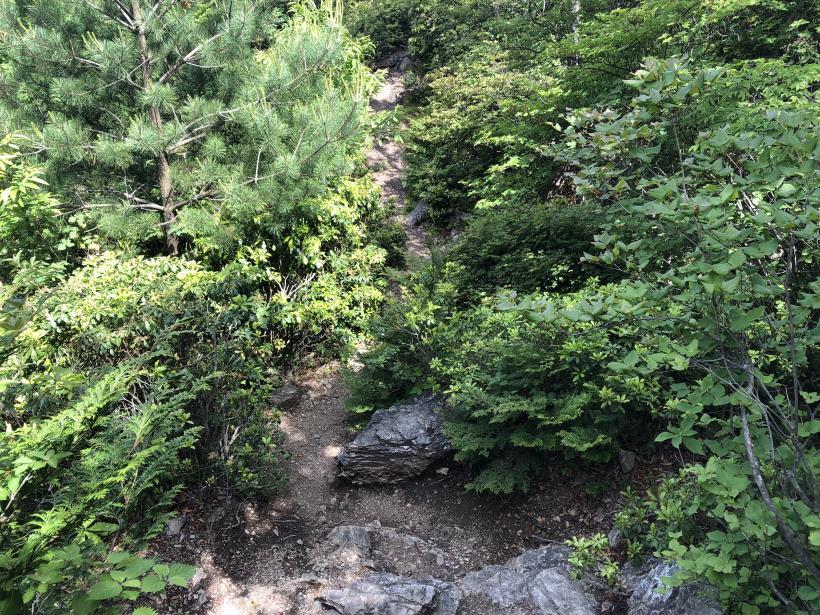 武甲山226