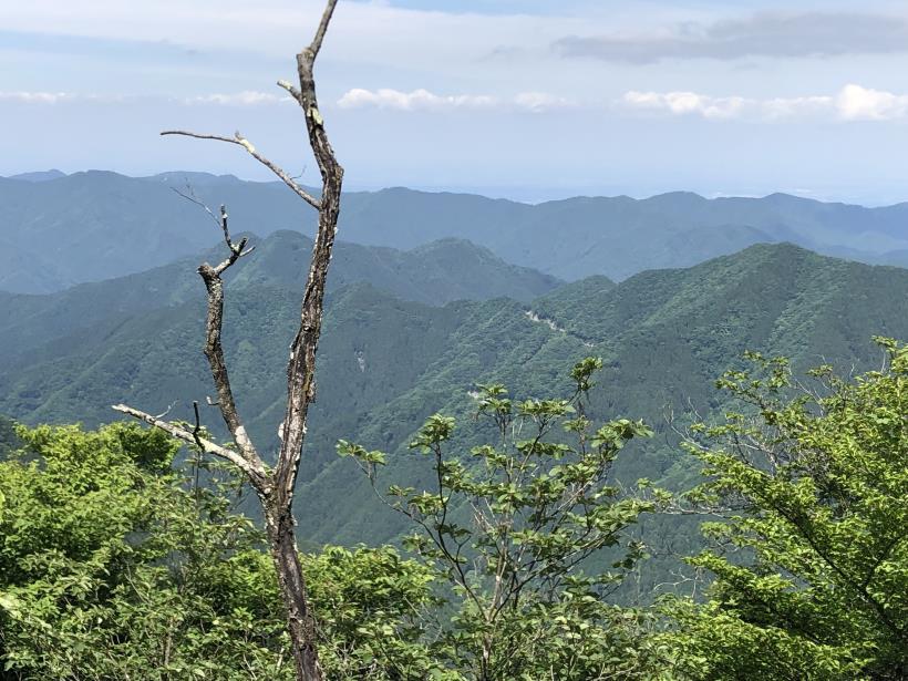 武甲山229
