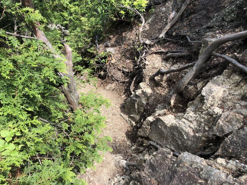 武甲山247