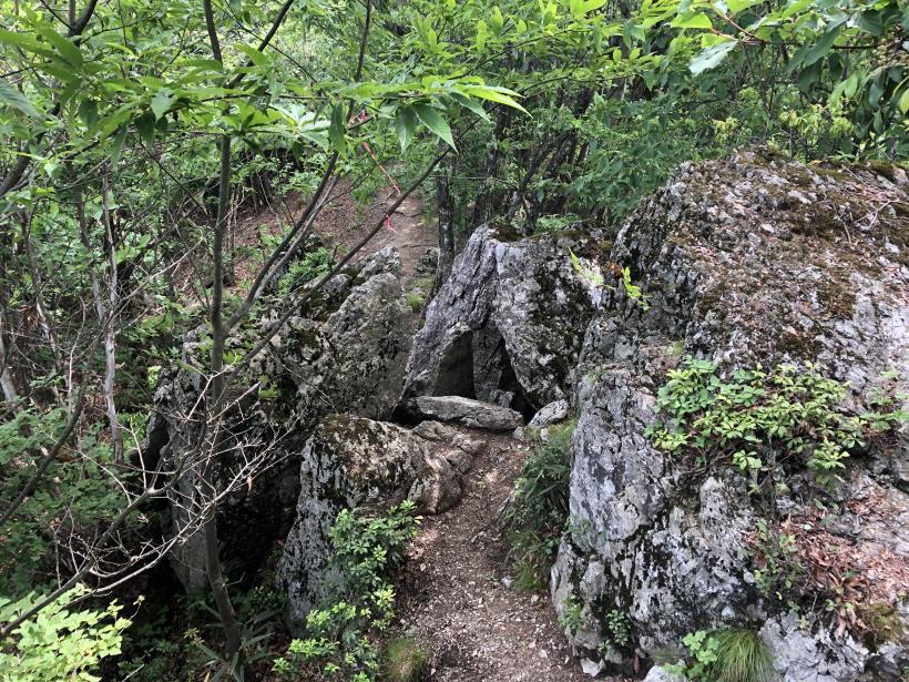 武甲山253