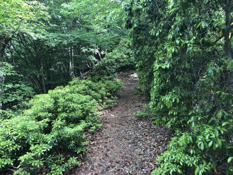 武甲山256