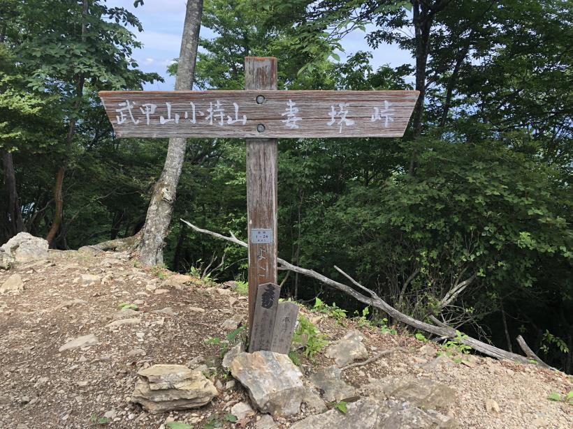 武甲山261