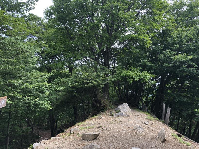 武甲山262