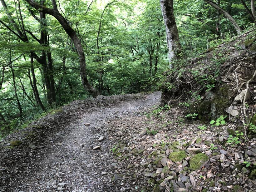 武甲山299