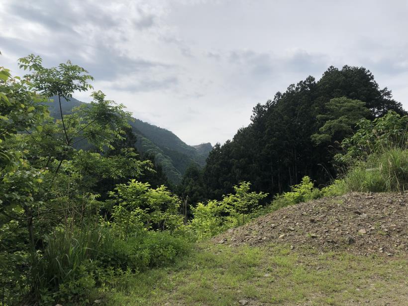 武甲山308