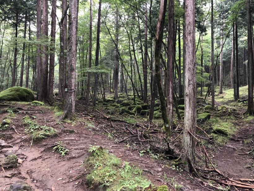 笠取山でヤラれまくる09