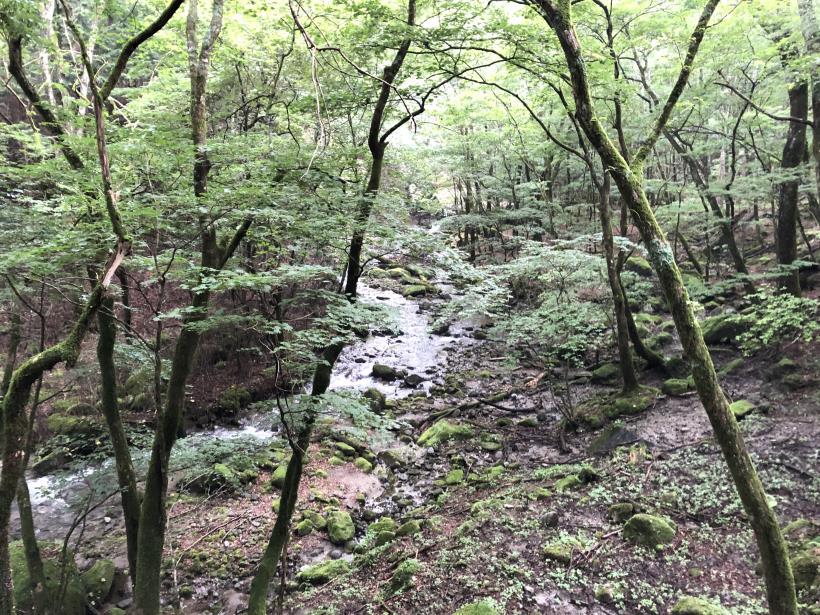 笠取山でヤラれまくる11