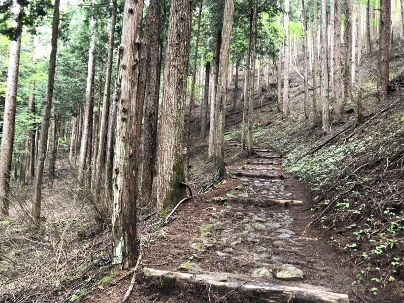 笠取山でヤラれまくる19