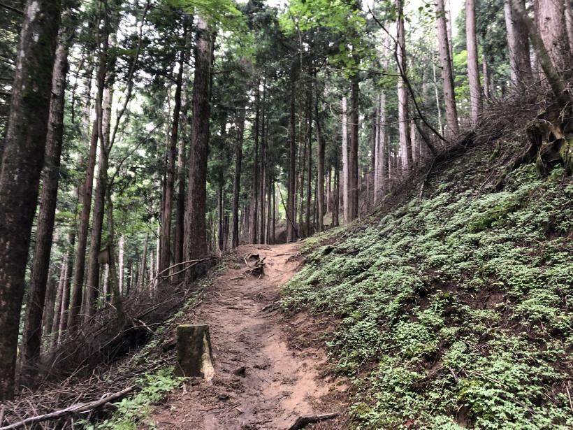 笠取山でヤラれまくる20