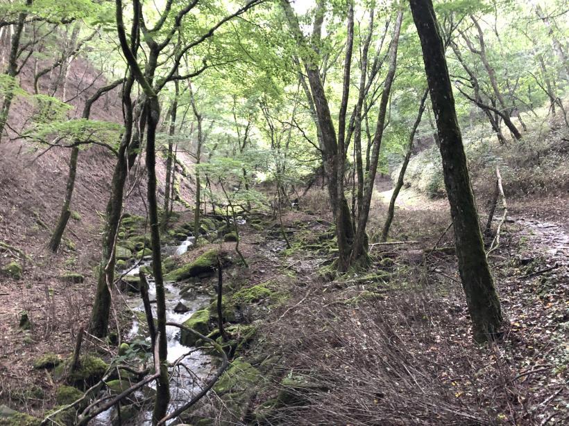 笠取山でヤラれまくる23
