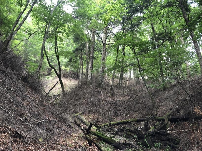 笠取山でヤラれまくる52