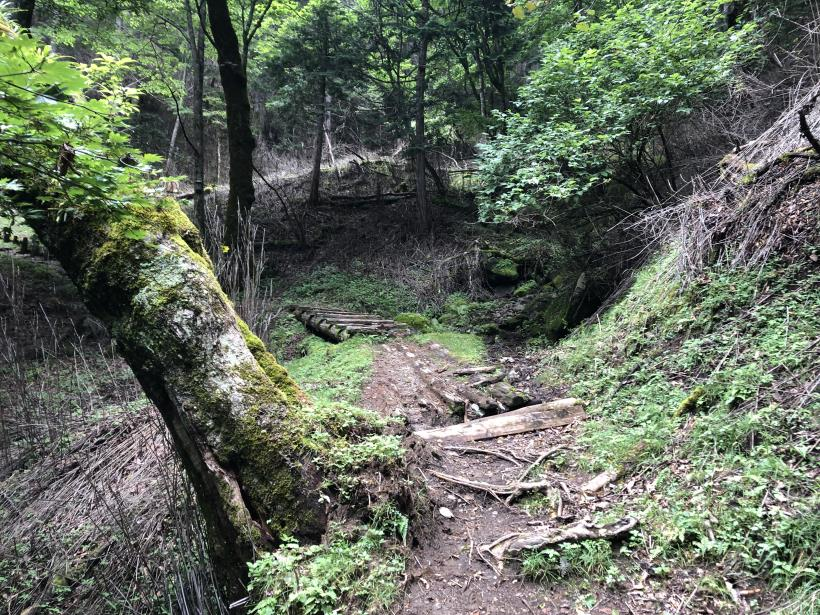 笠取山でヤラれまくる53