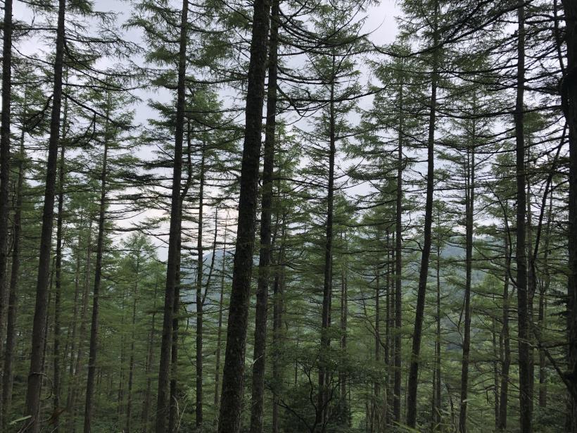 笠取山でヤラれまくる63