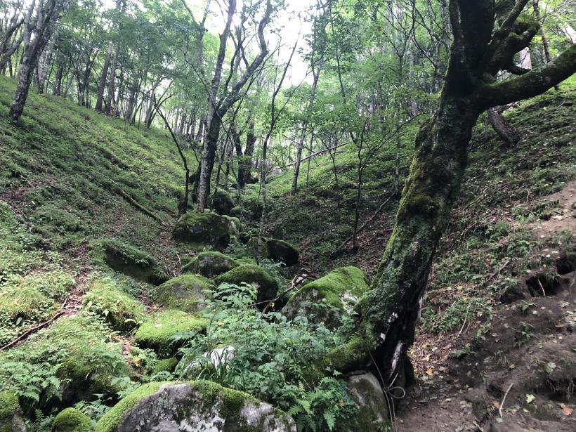 笠取山でヤラれまくる67