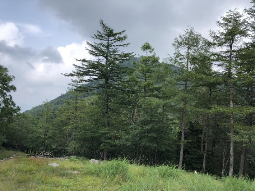 笠取山でヤラれまくる94