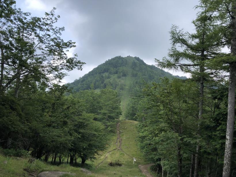 笠取山でヤラれまくる95
