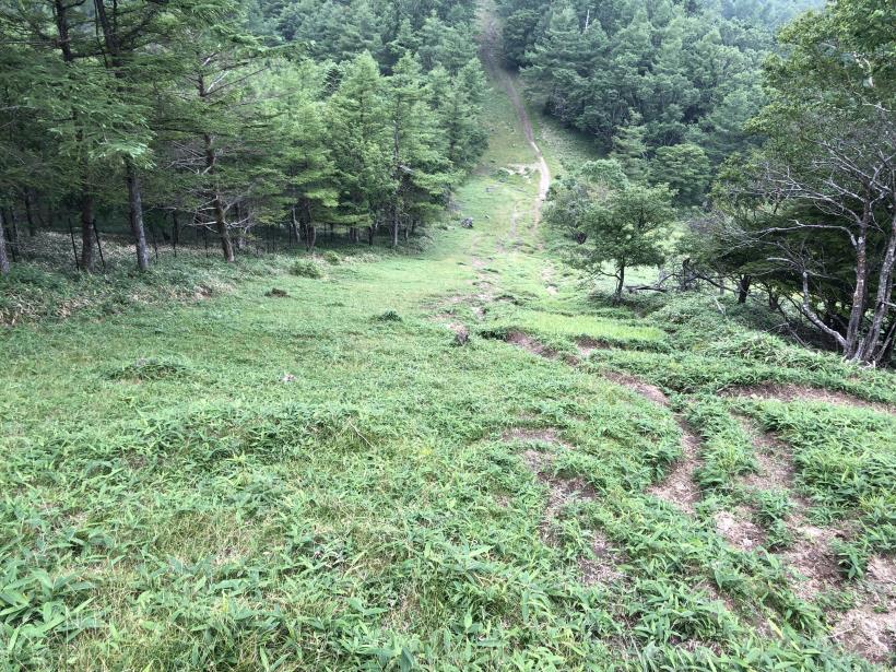 笠取山でヤラれまくる100