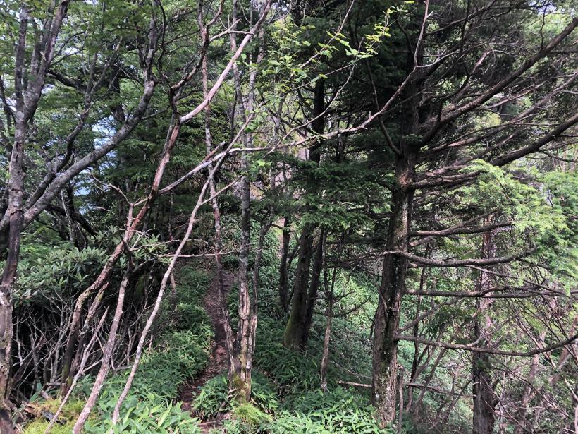 笠取山でヤラれまくる116