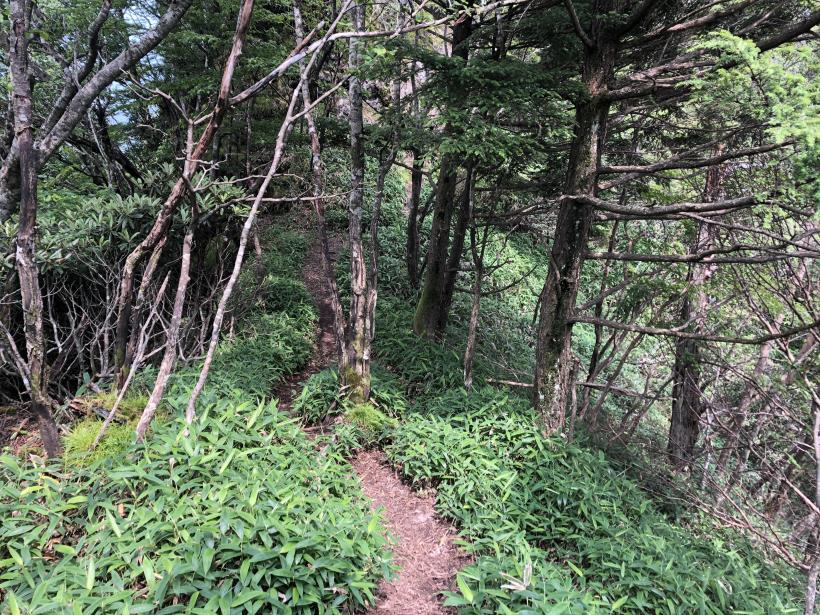 笠取山でヤラれまくる117