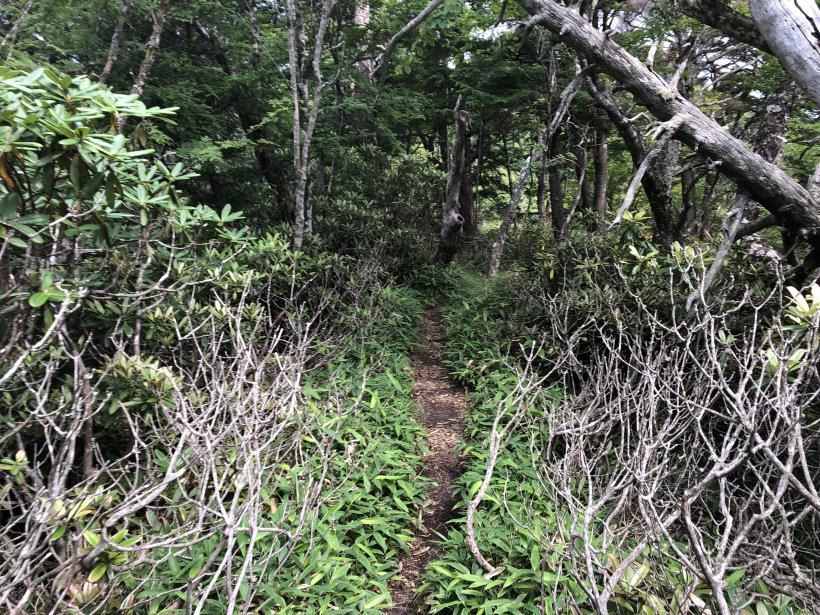 笠取山でヤラれまくる125