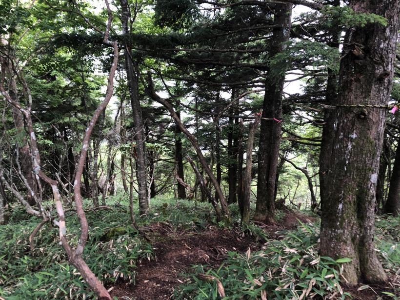 笠取山でヤラれまくる131