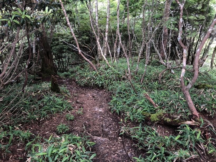 笠取山でヤラれまくる132
