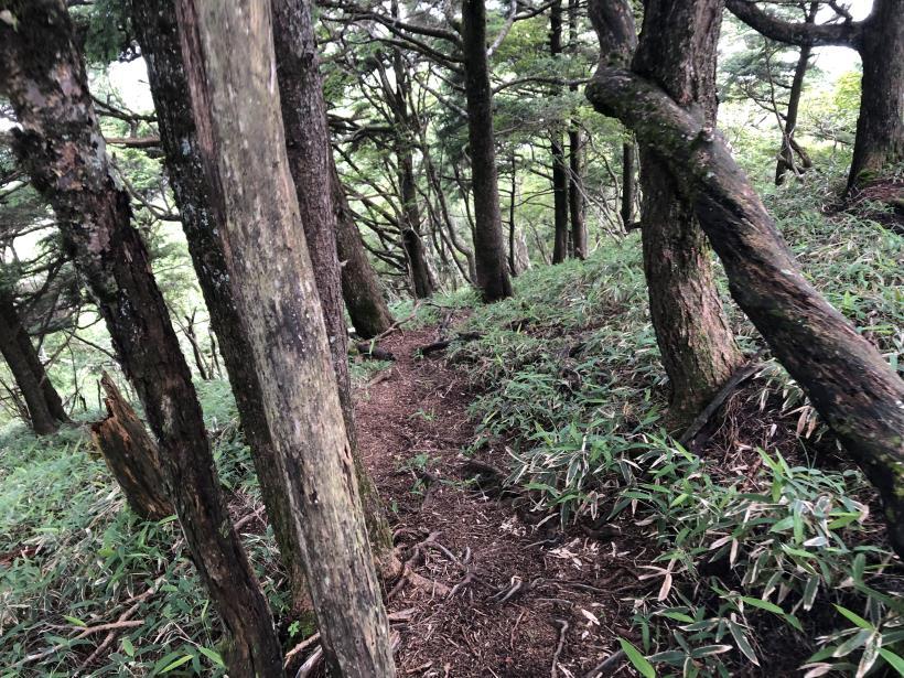 笠取山でヤラれまくる133