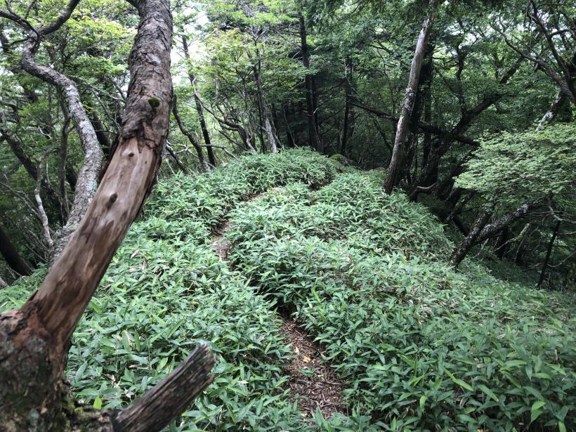 笠取山でヤラれまくる134
