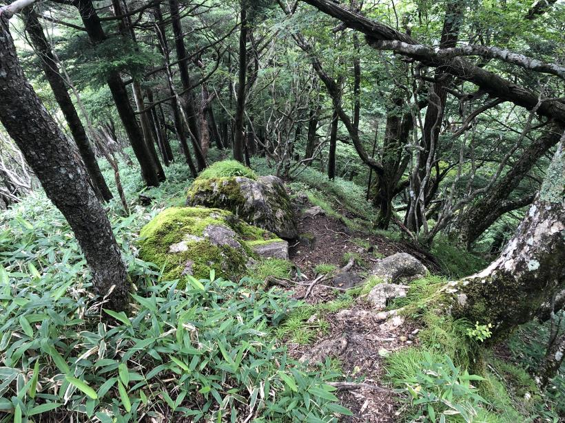 笠取山でヤラれまくる135