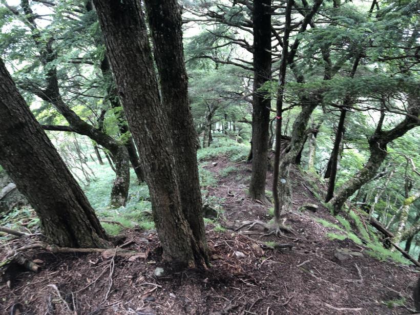 笠取山でヤラれまくる136
