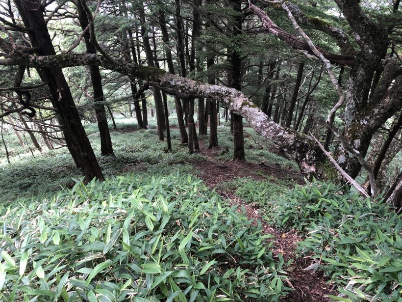 笠取山でヤラれまくる137