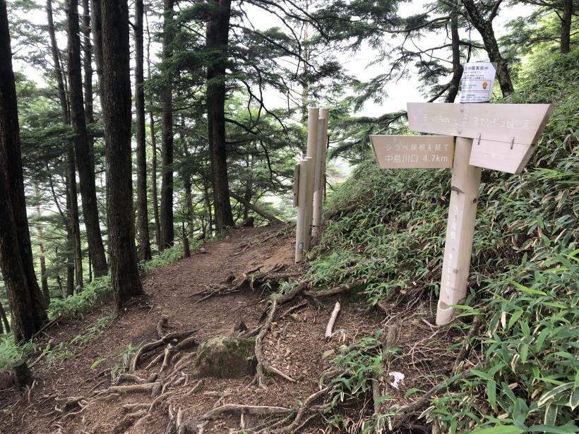 笠取山でヤラれまくる138