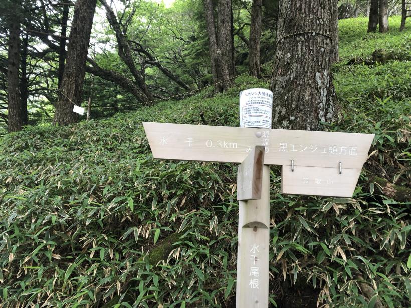 笠取山でヤラれまくる141