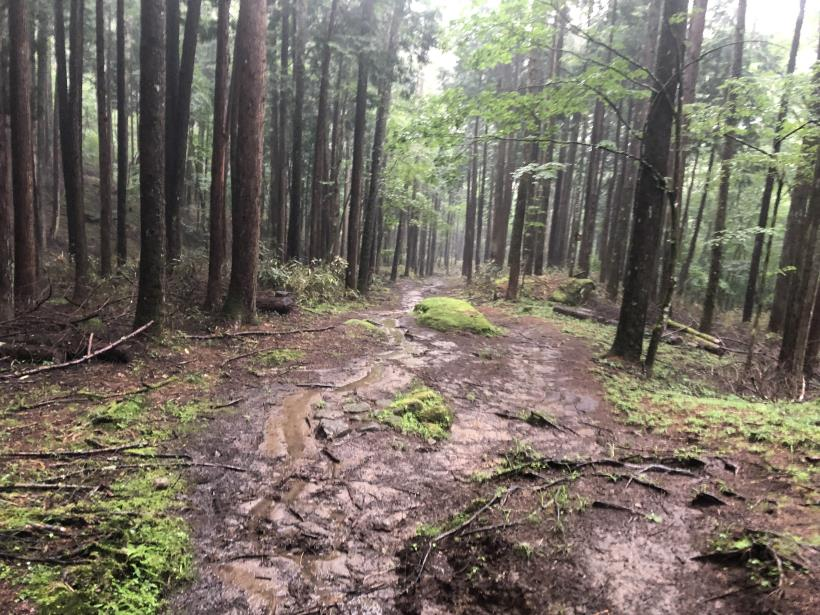 笠取山でヤラれまくる170