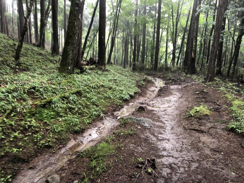 笠取山でヤラれまくる171