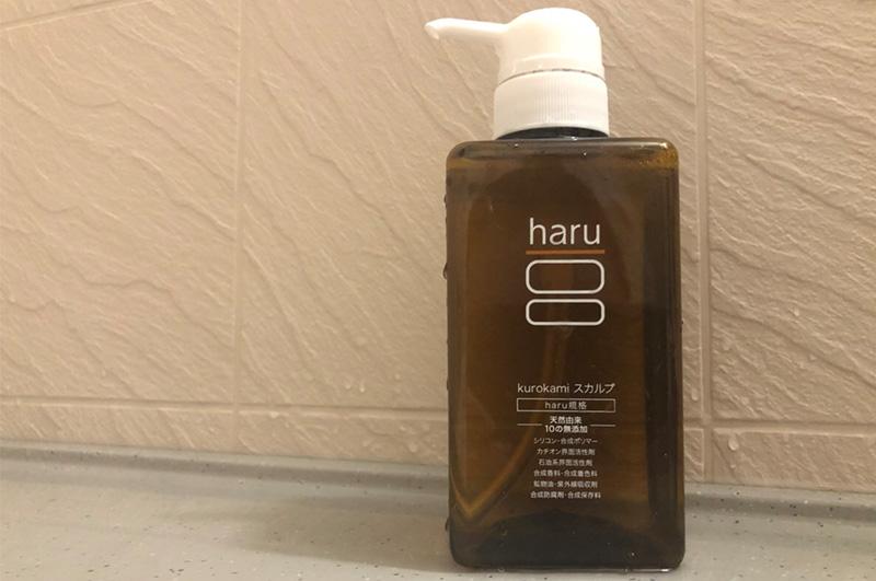 haru_spimg_3.jpg