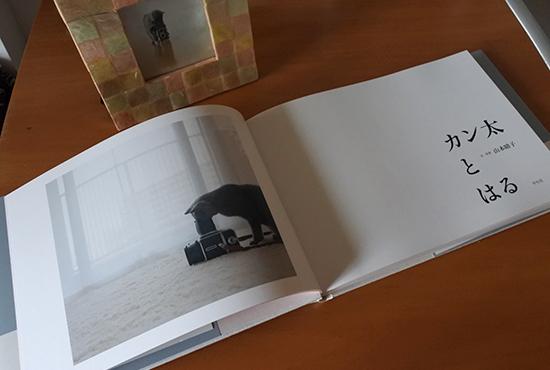 190521_kantatoharu.jpg