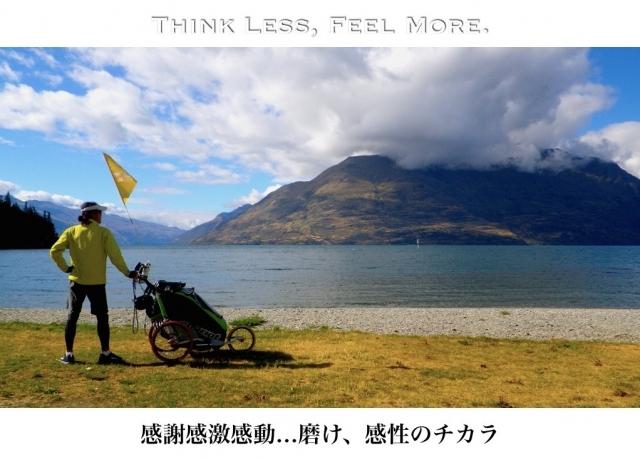 goroku_feel.jpg