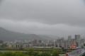 31.6雨*1