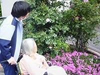 190515お庭散策★ (4)