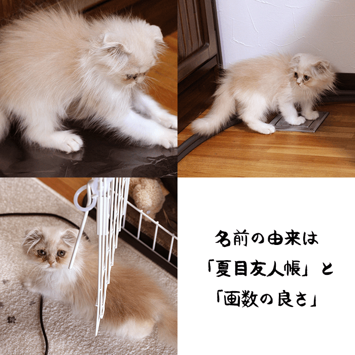 20190728-06.png