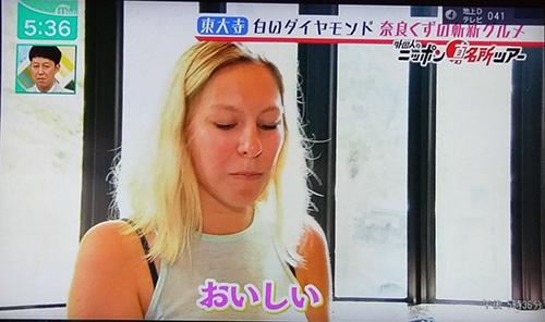 天極堂奈良本店葛きり葛とじごはんミント2019070509