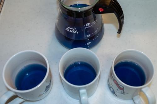 バタフライピーの青が綺麗